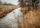 Saltø Å skal hjælpe vandmiljøet i Karrebæk Fjord